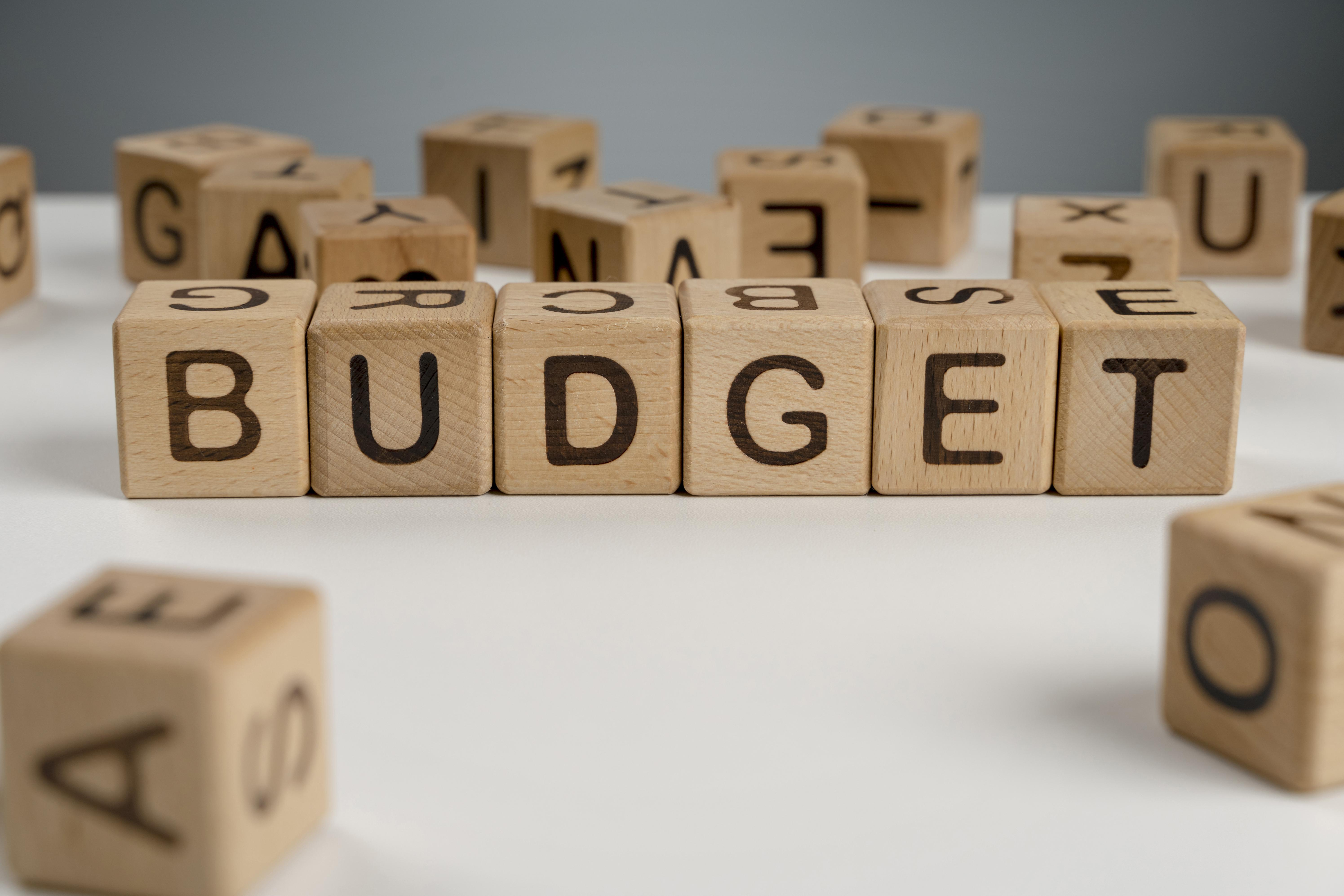 What Does the Budget Hold for MSME Business Owners?